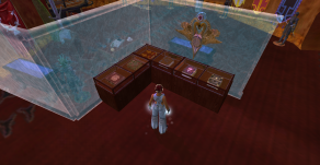 EQ2: books in display cabinets