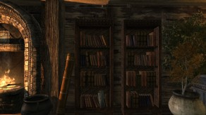 Skyrim: Bookshelves in The Reserve
